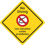 No Diving English/Spanish Large
