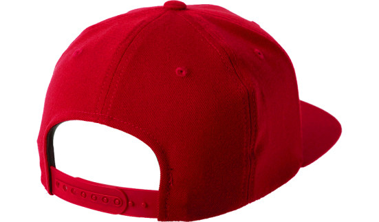 eb828910f6d804 Red Lifeguards Without Borders Flexfit Snapback Hat